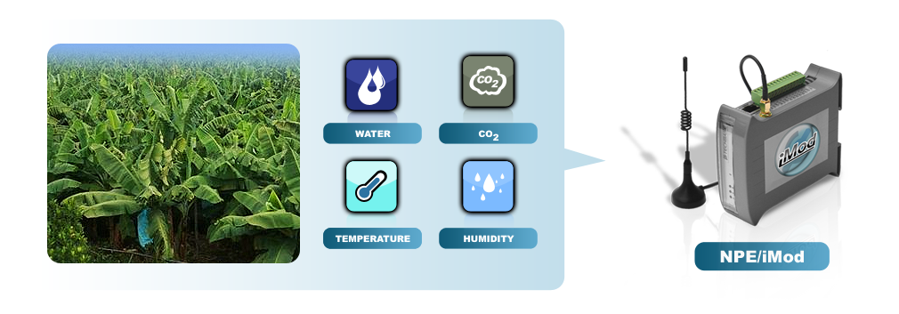 monitoring uprawy roślin